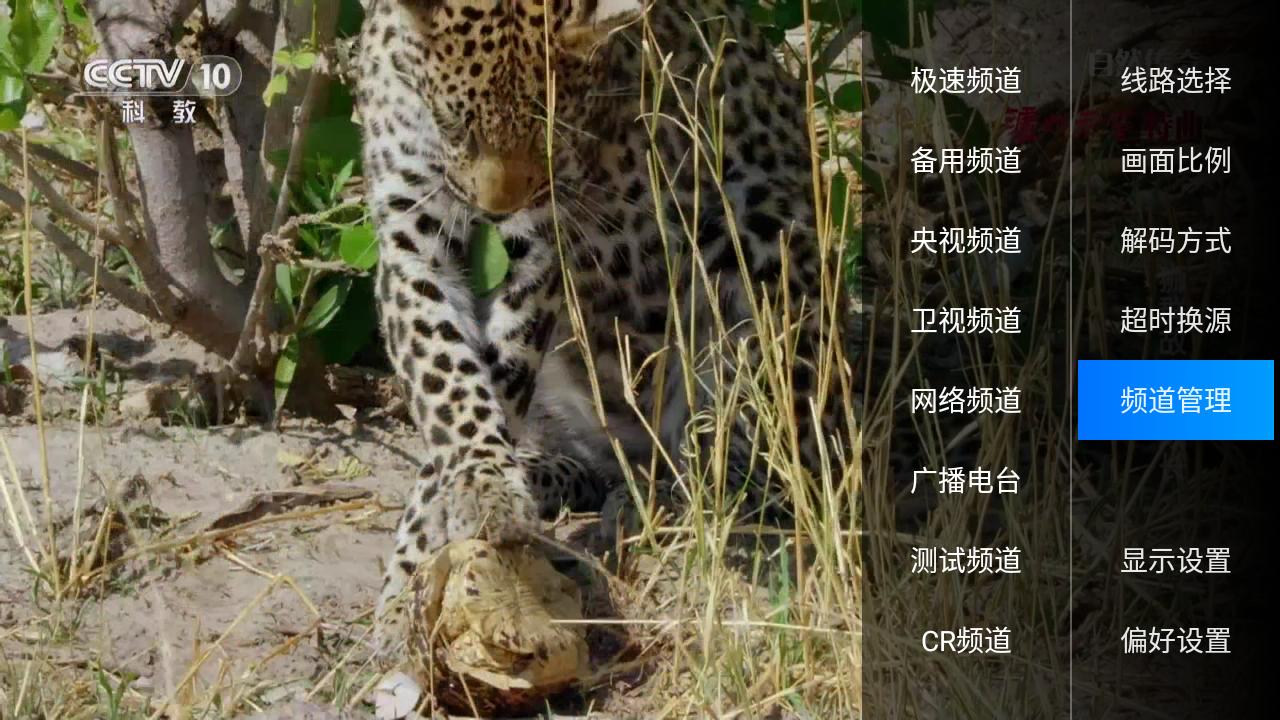 小君tv white V3.1 安卓电视版截图1