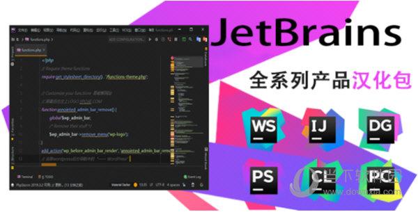 JetBrains汉化补丁