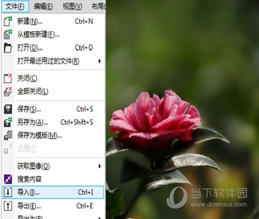 coreldraw x4简体中文正式版破解版