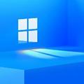 Windows11 64位专业版 V22458.1000 简体中文版