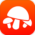 菌窝子 V1.0.53 安卓版