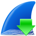 Wireshark(网络协议分析) V3.4.1 绿色版