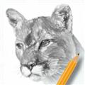素描绘画入门教程 V2.6 安卓版