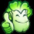 大白菜一键重装系统win7旗舰版 V6.0.2101.28 绿色免费版