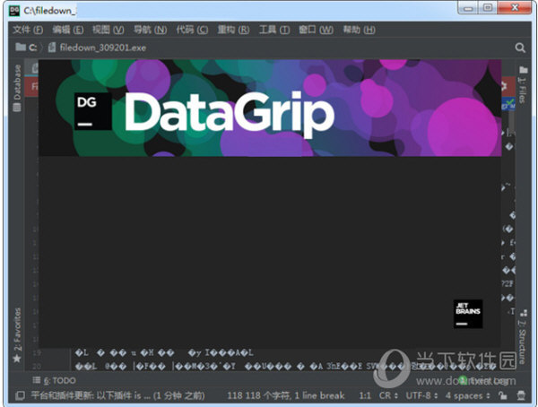 datagrip2021汉化包